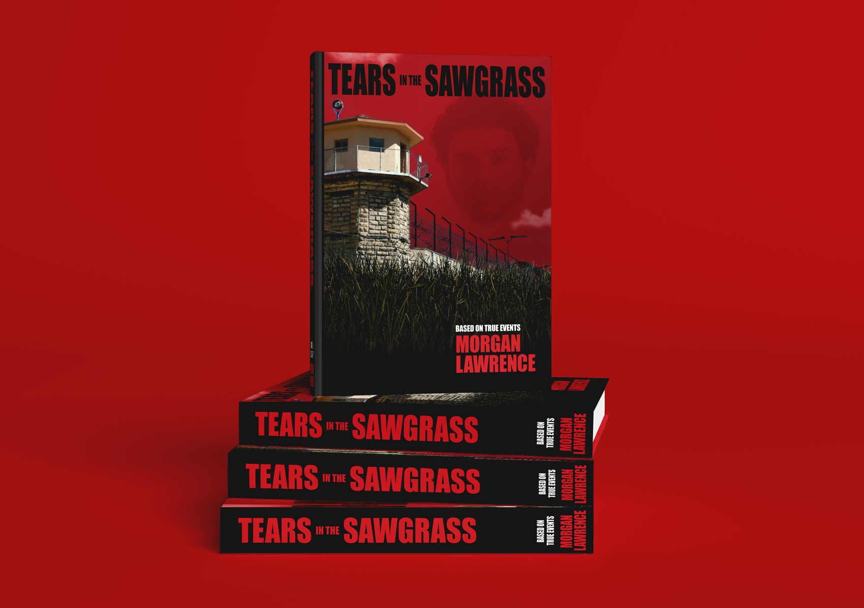 Tears in the Sawgrass – Book Cover